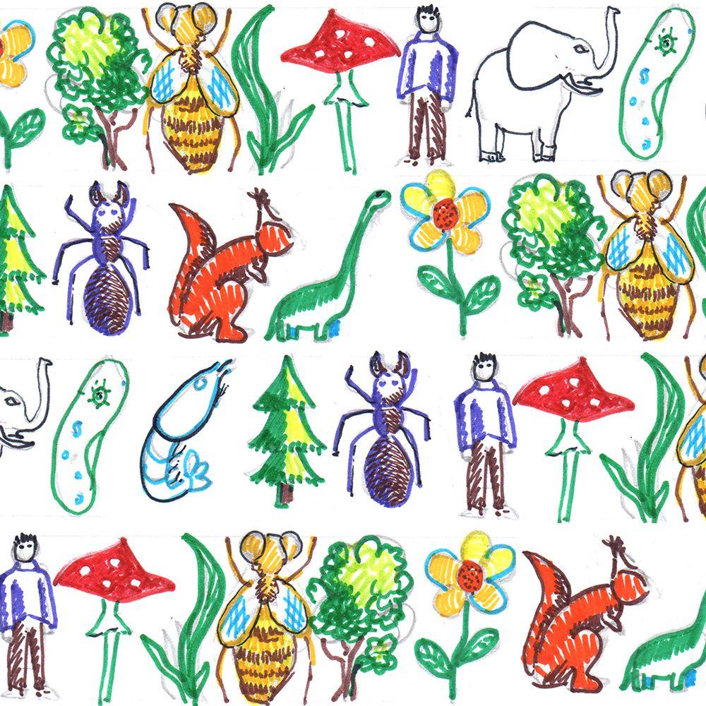 Выставка-исследование «Зеленый хутор» откроется в КЦ «Типография» в рамках проекта «Примирение»