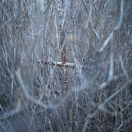В Санкт-Петербурге пройдет выставка «Ледяной поход» из серии художественных проектов «Примирение»