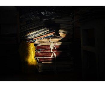 """Photo exhibition of Pavel Miroshnikov """"My Auntie's Museum"""""""