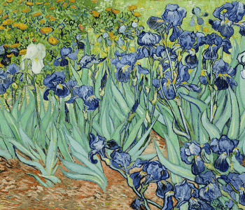 Exhibition «Van Gogh. Symphony of color»