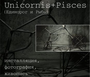 Выставка Михаила Гаврюшова «Unicornis+Pisces»