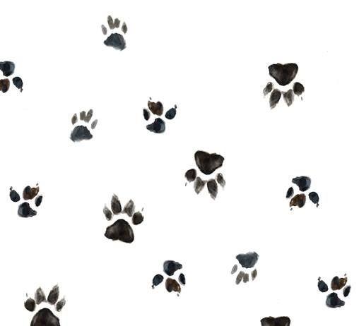 Мастер-класс Катерины Филимоновой «Акварельная собака»
