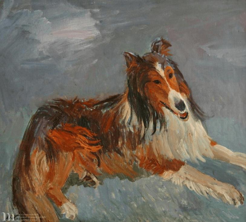 Выставка «Такие разные собаки»