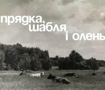 Выставка «Прялка, сабля и олень»