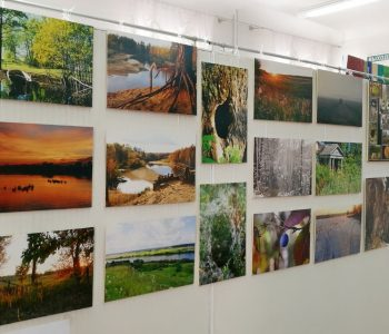 "Exhibition ""Nature of the Oka State Reserve"""