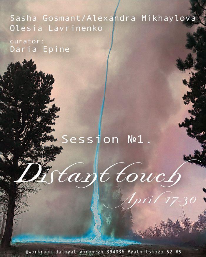 Выставка Саши Госмант и Олеси Лавриненко «Session №1. Distant touch.» в Воронеже